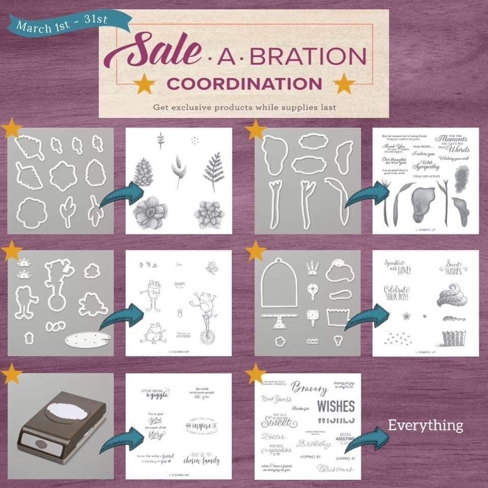 coordinating products sale a bration