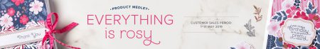 everything is Rosy product medley stampin up