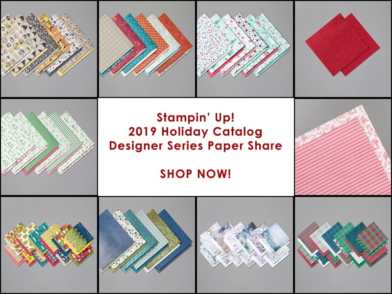 Designer Series Paper holiday catalog share stampin up