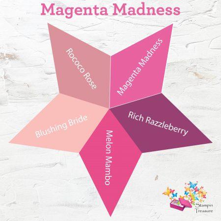 magenta madness, in color, 2020-2021, stampin up, vergelijk, compare, stampin treasure